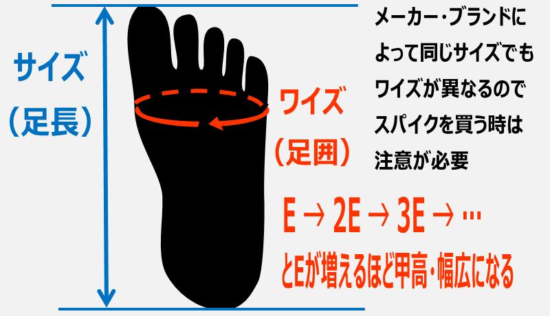 サイズとワイズの説明図